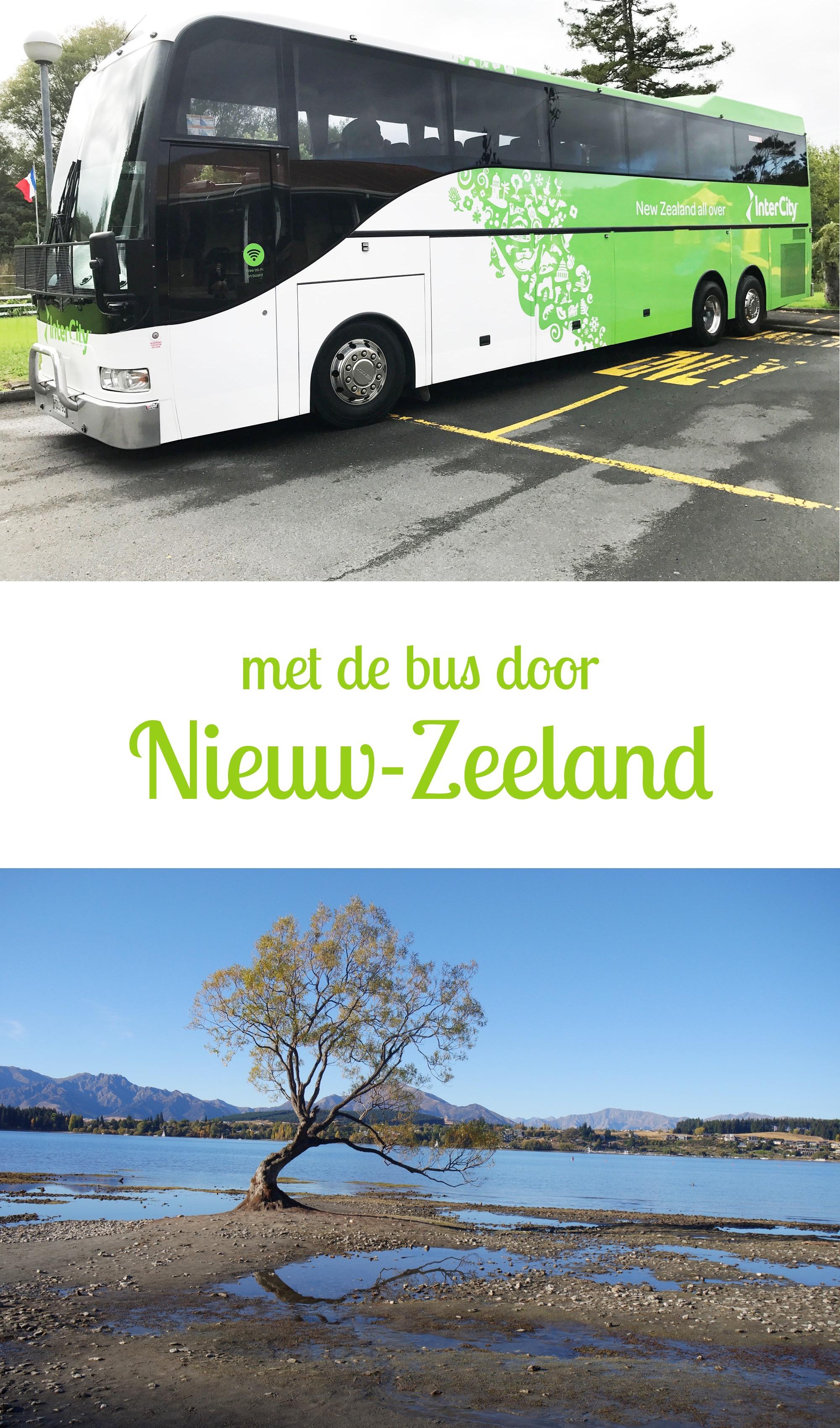 Met de Intercity Bus door Nieuw Zeeland