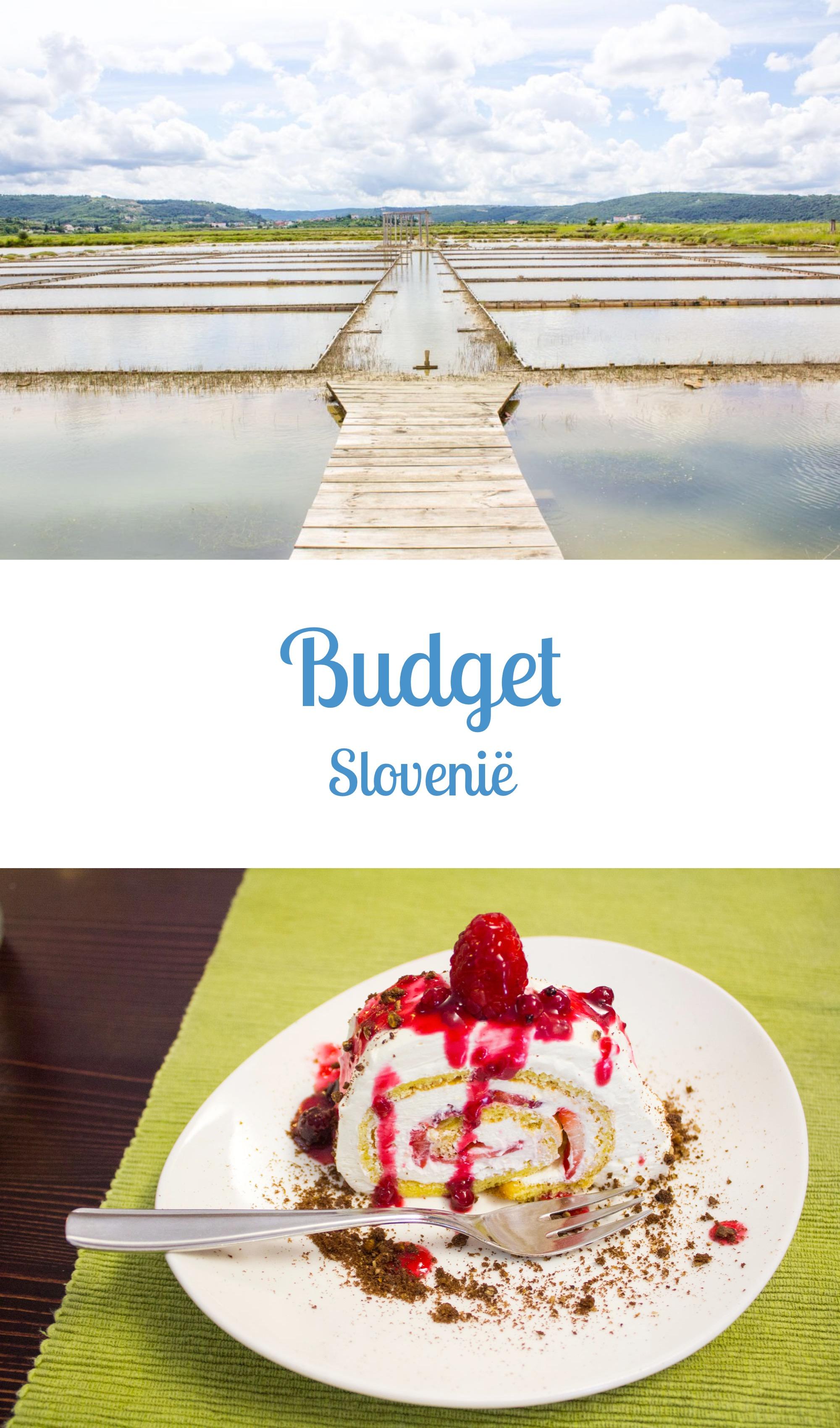 Slovenië: Budget