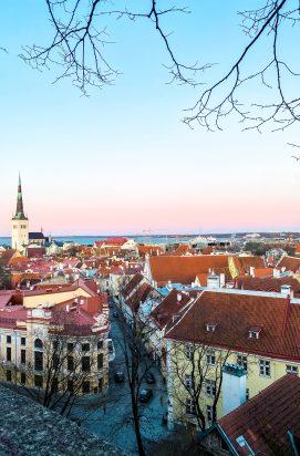 Stedentrip Tallinn: Uitzicht bij Kohtuotsa