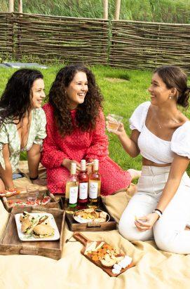 High wine picknick in eigen tuin